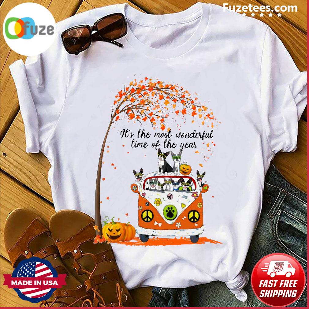Halloween Cat Pumpkin It's The Most Wonderful Time Of The Year Shirt